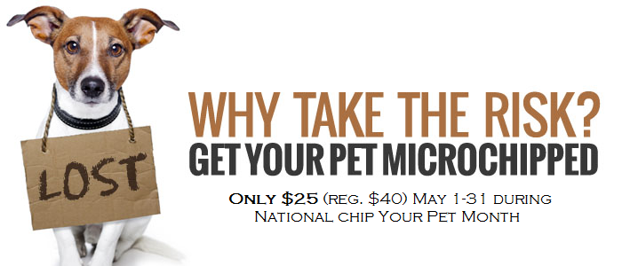 Microchip $25 May Promo